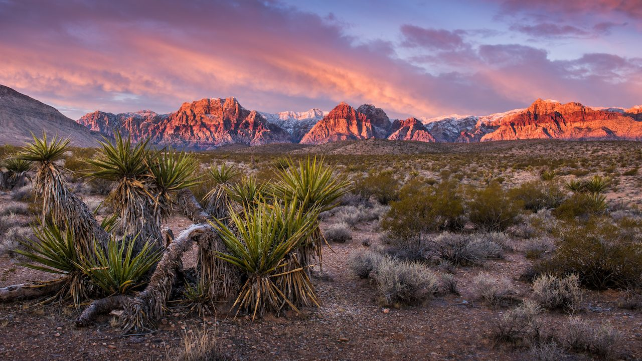 Sunrise at Red Rock Canyon, Nevada