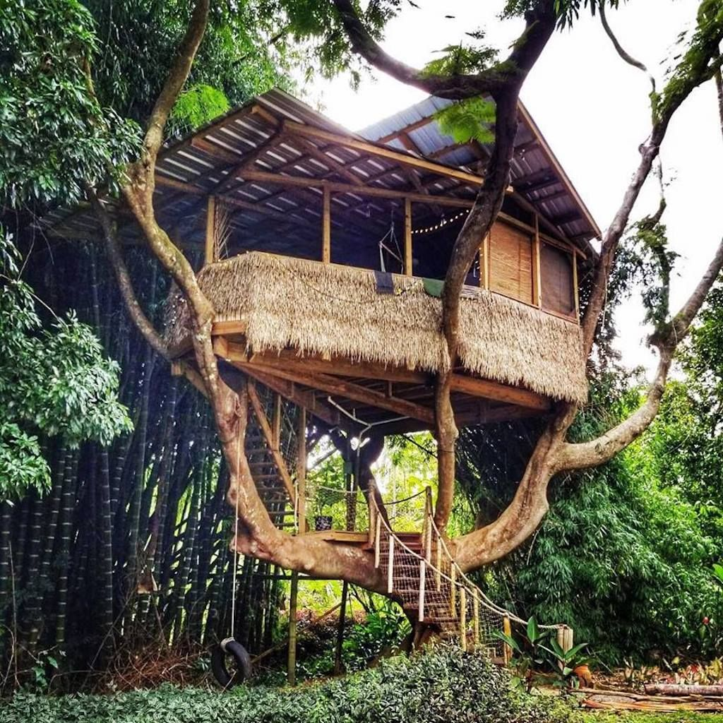 Treehouse Airbnb in Puerto Rico
