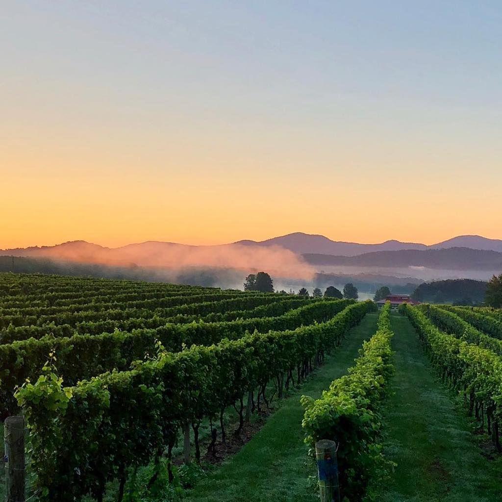 Vineyard Cottages at Afton Mountain Vineyards