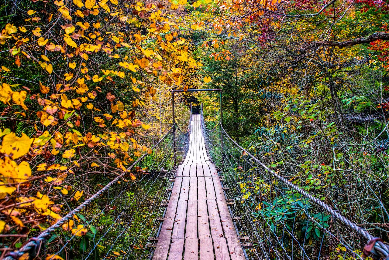 Wood bridge surrounded by fall foliage in Fall Creek Falls State Park, Pikeville, Tennessee