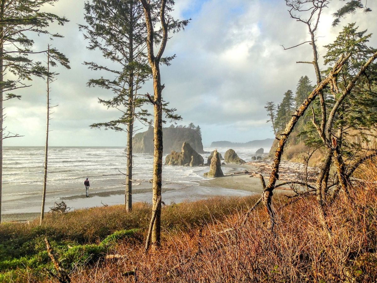 12 Beautiful Images Of A Road Trip Through The Pacific Northwest