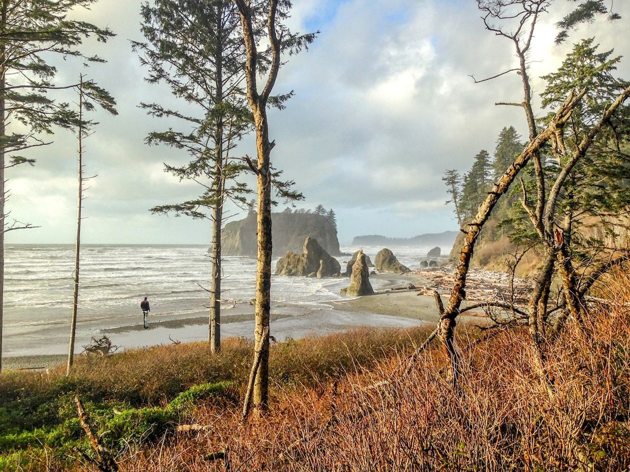 Pacific Northwest road trip photos