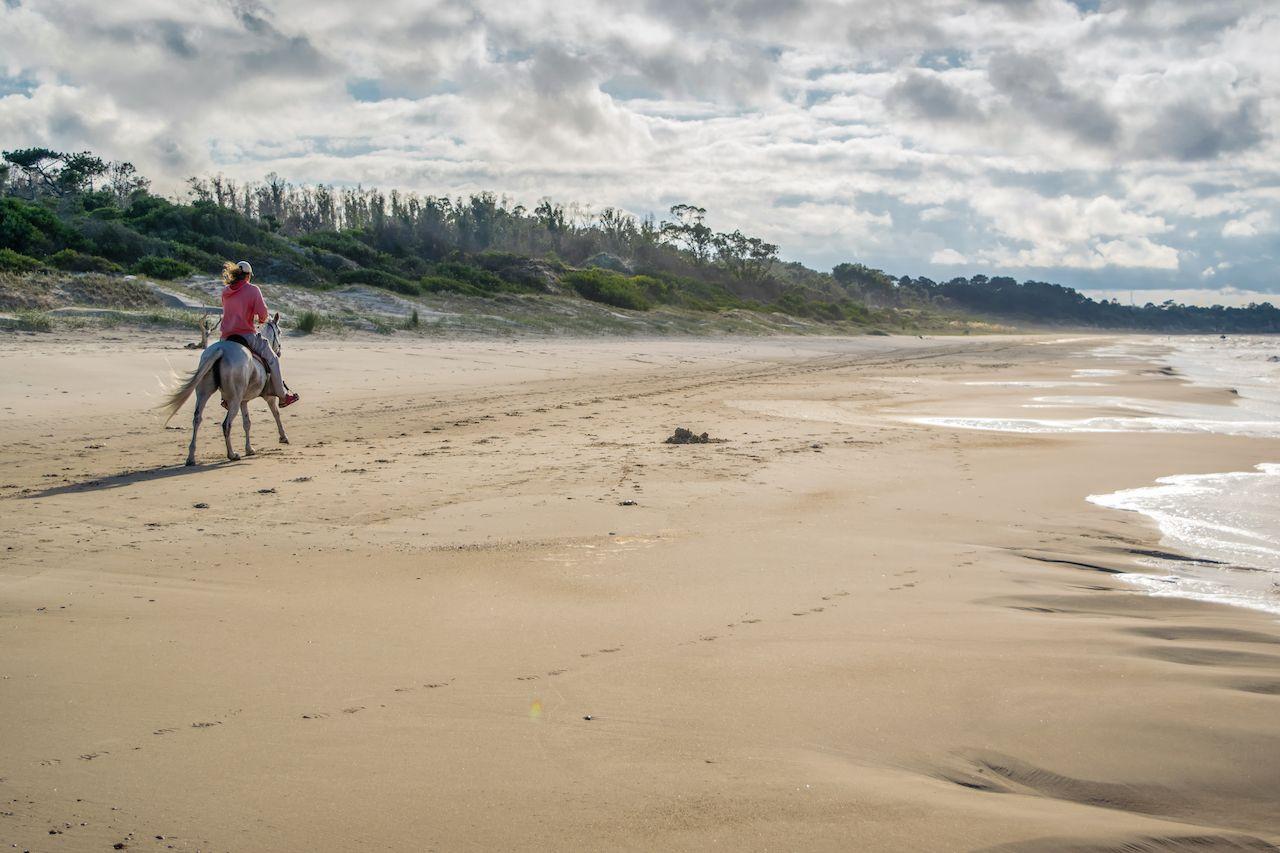 A man in a morning horse riding along the beach