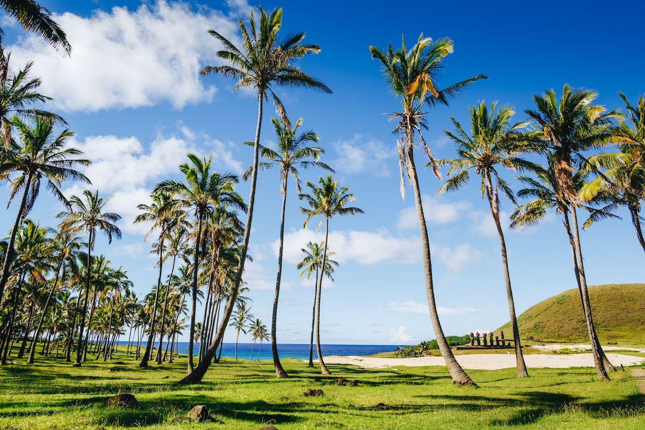 Anakena beach Easter Island Chile