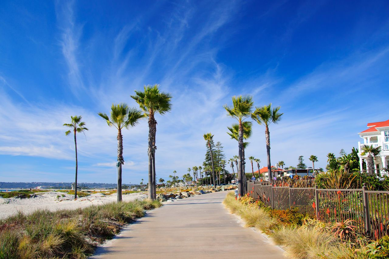 Blue skies and palm trees in San Diego, CA