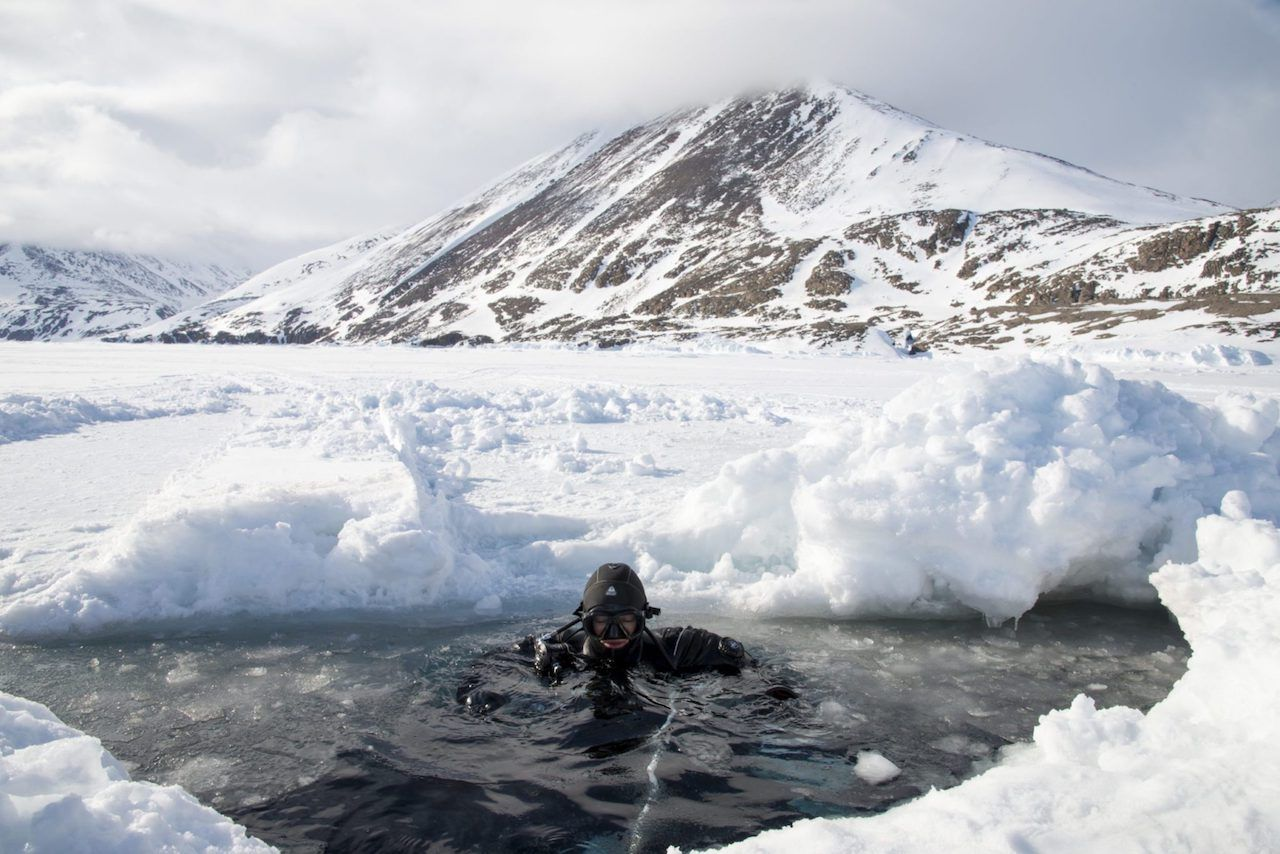 Diving under the Artic ice