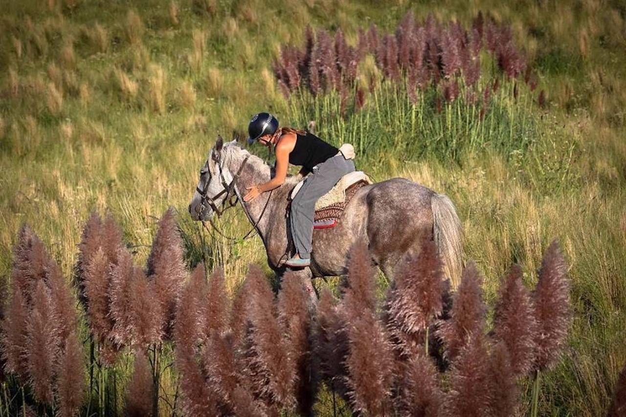 Horseback rider at the Estancia Los Potreros