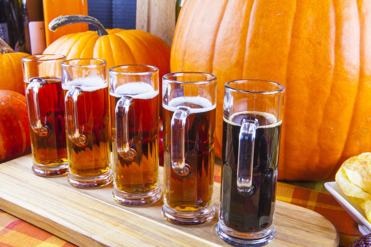 Flight of pumpkin beer surrounded by pumpkins