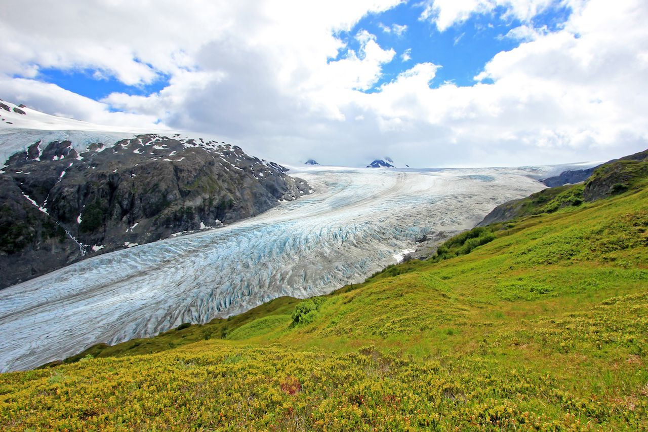 Ice and green hills at the Exit Glacier in Alaska