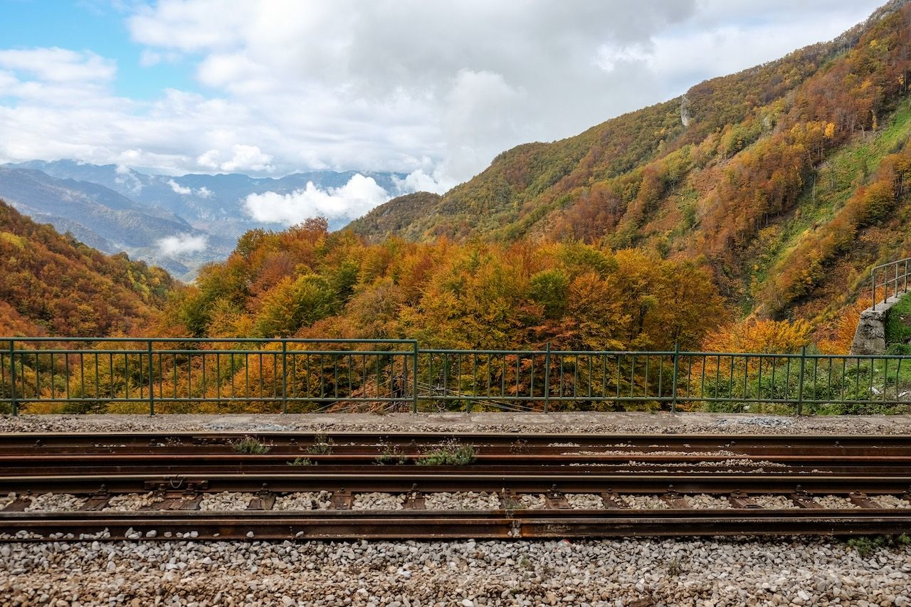 Montenegro Express fall foliage scenery