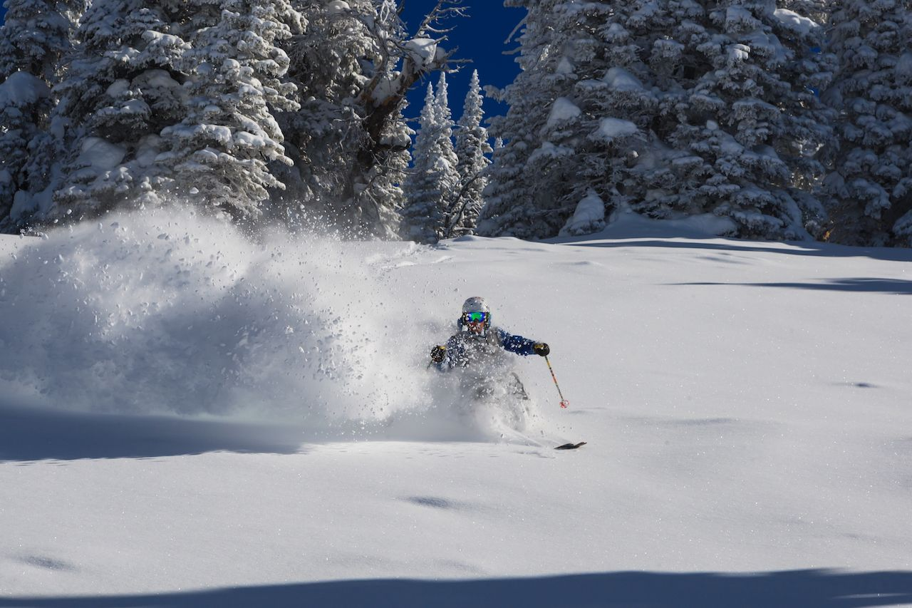 Skier flying down fresh powder