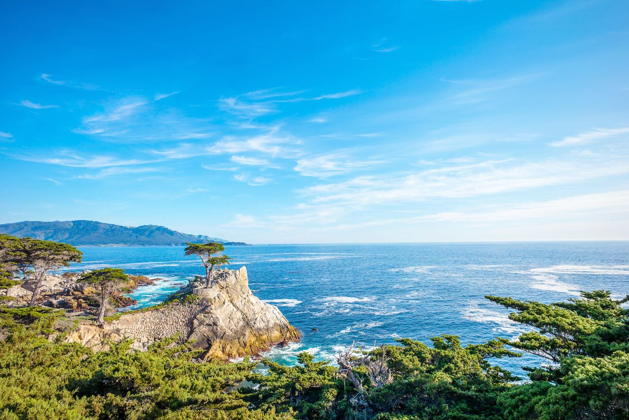 The Lone Cypress, seen from 17 Mile Drive, in Pebble Beach, California