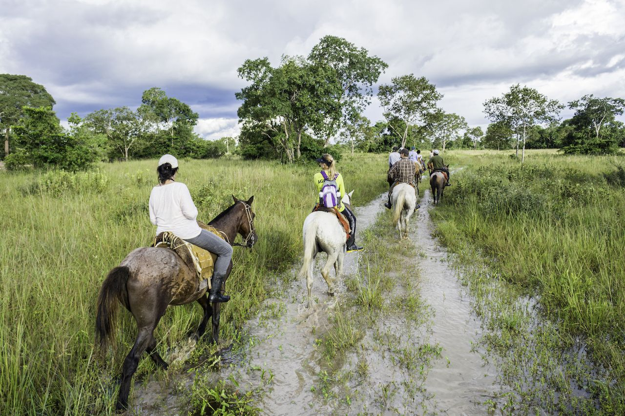 Tourists ride horses in the Pantanal, Brazil