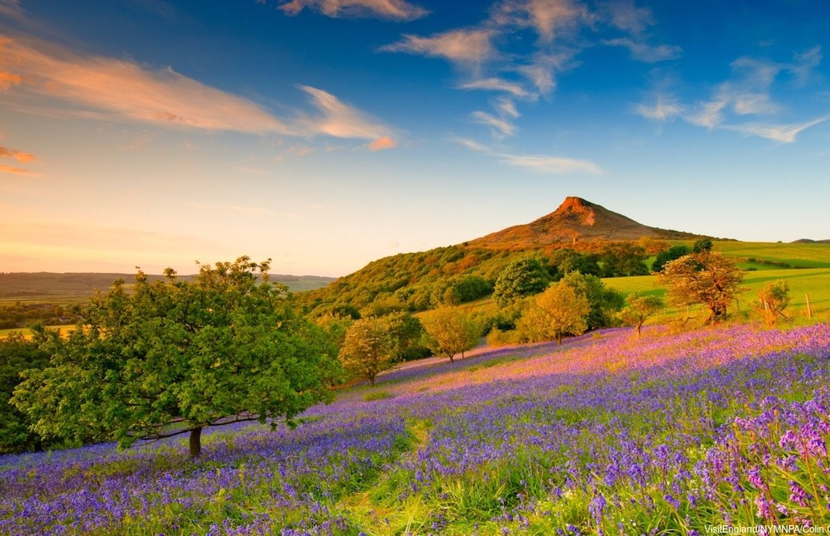 6 awesome reasons to visit Britain this spring