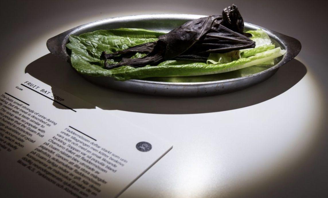Disgusting Food Museum in Sweden