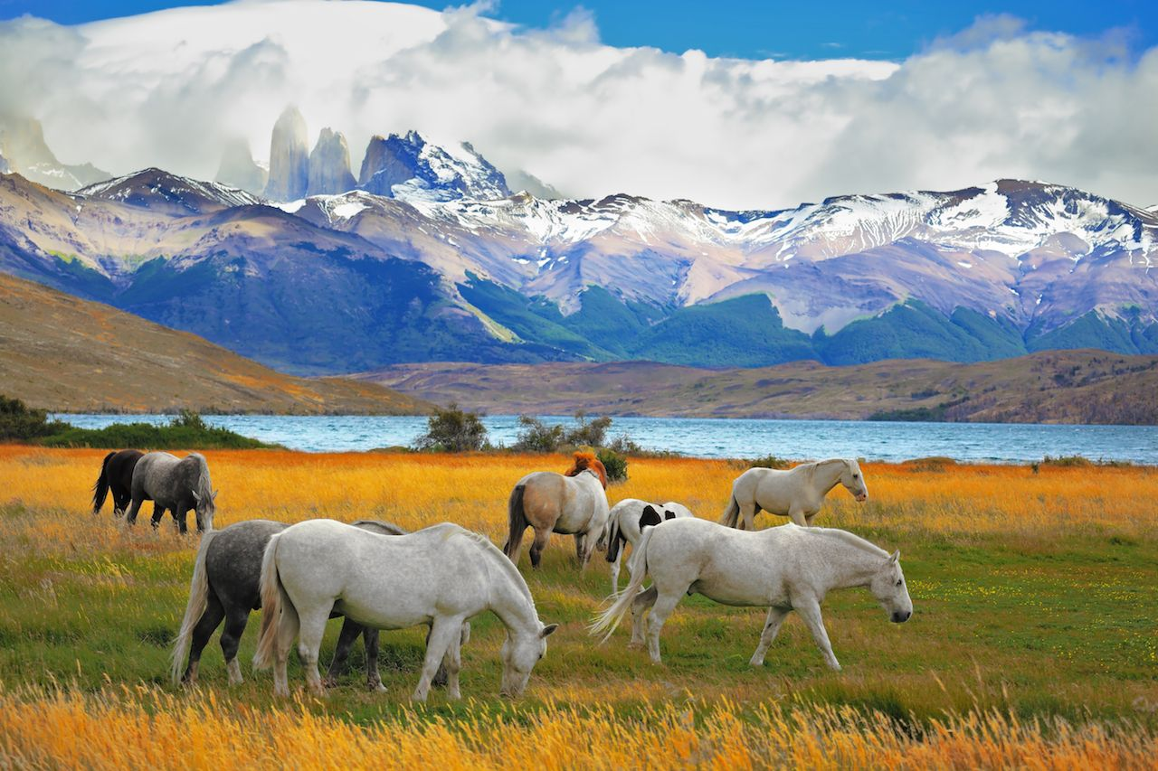 Why you should visit Chile