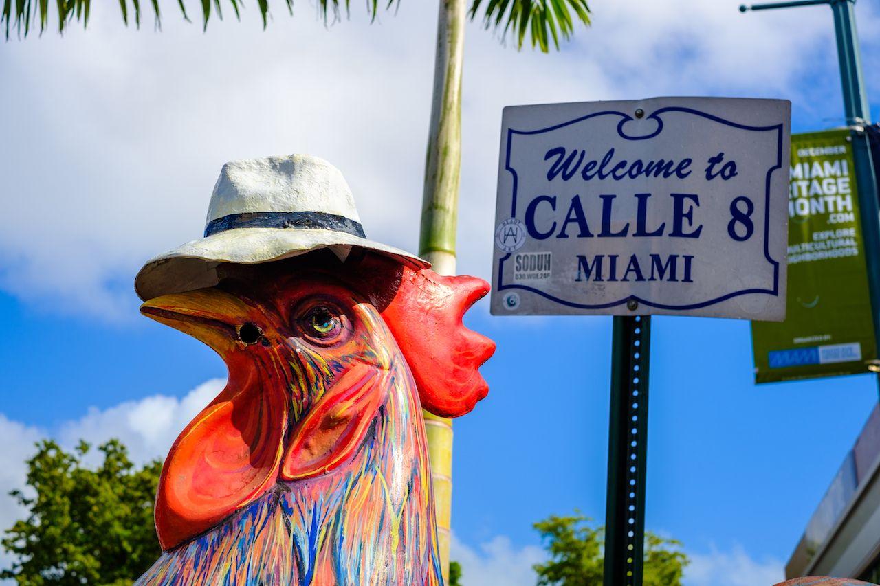 Colorful artwork on display along the popular Calle Ocho in Historic Little Havana