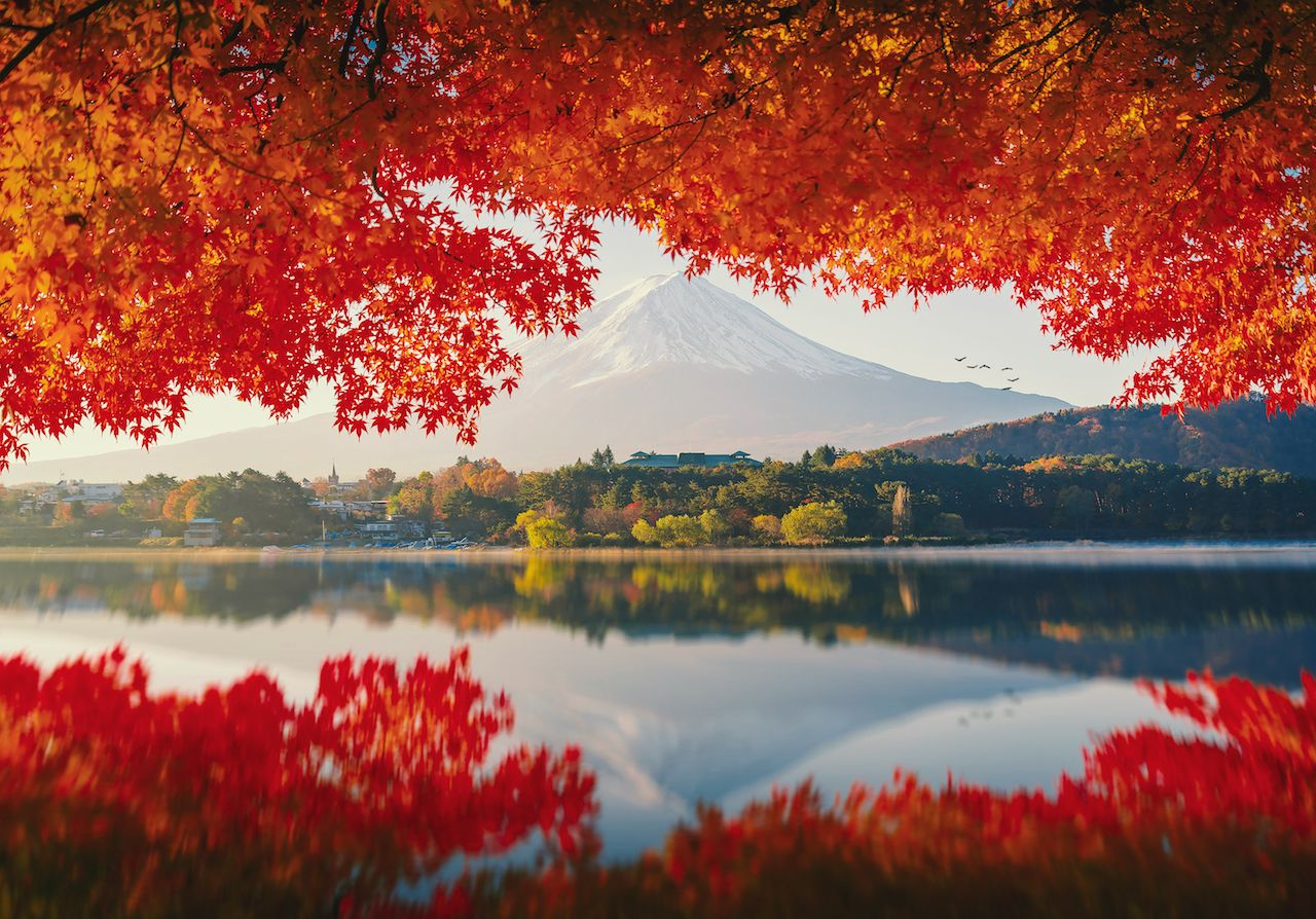 Mount Fuji in autumn at sunrise on Lake Kawaguchiko