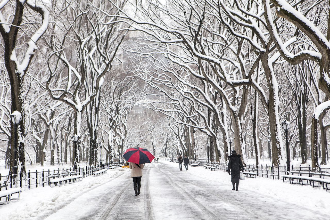 People walking through snow in winter in Central Park, NYC