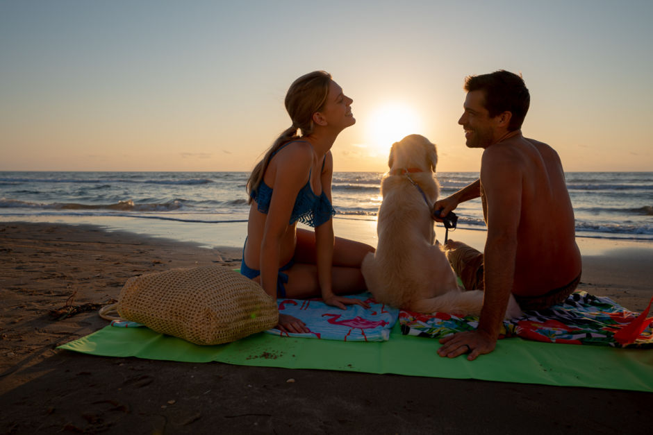 South Padre Island beach couple pets dog