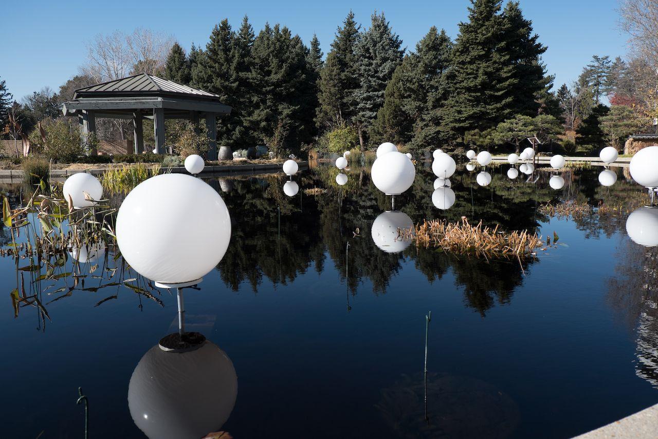 White lights on the pond at Denver Botanic Garden in Denver, Colorado