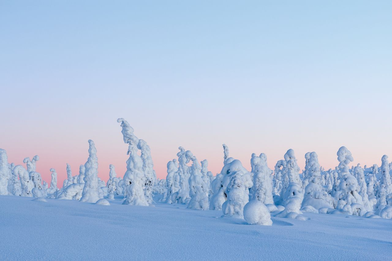 Winter landscape at sunrise in Finnish Lapland, Riisitunturi National Park