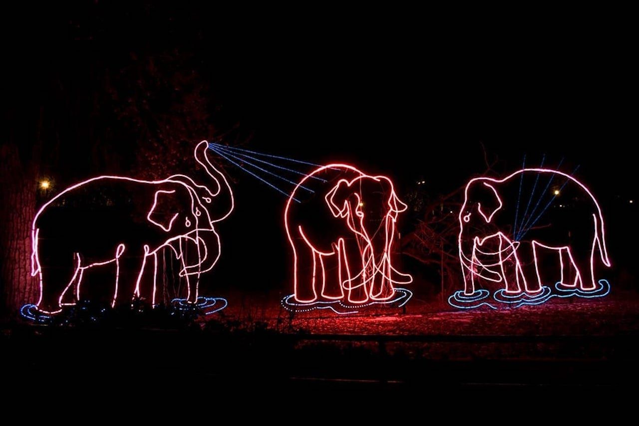 Zoo Lights display at the Denver Zoo