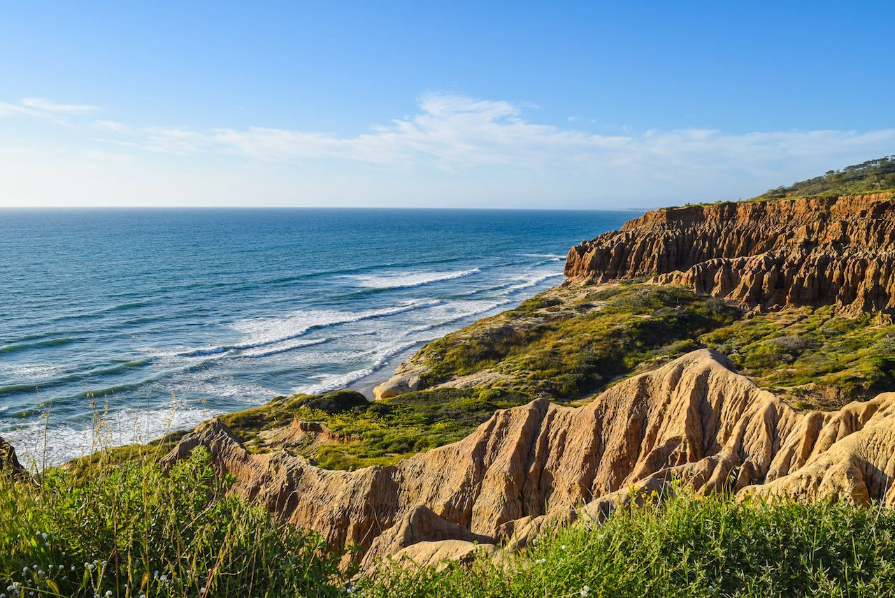 torrey pines coastline in san diego, california