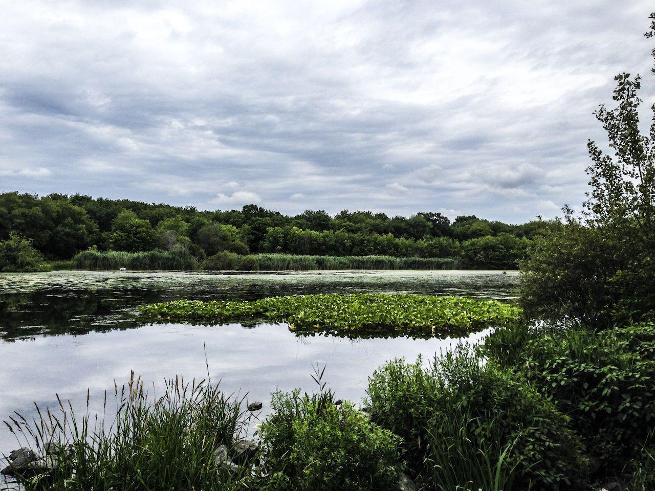 A cloudy day at Massapequa Park Preserve in Massapequa Park, Long Island