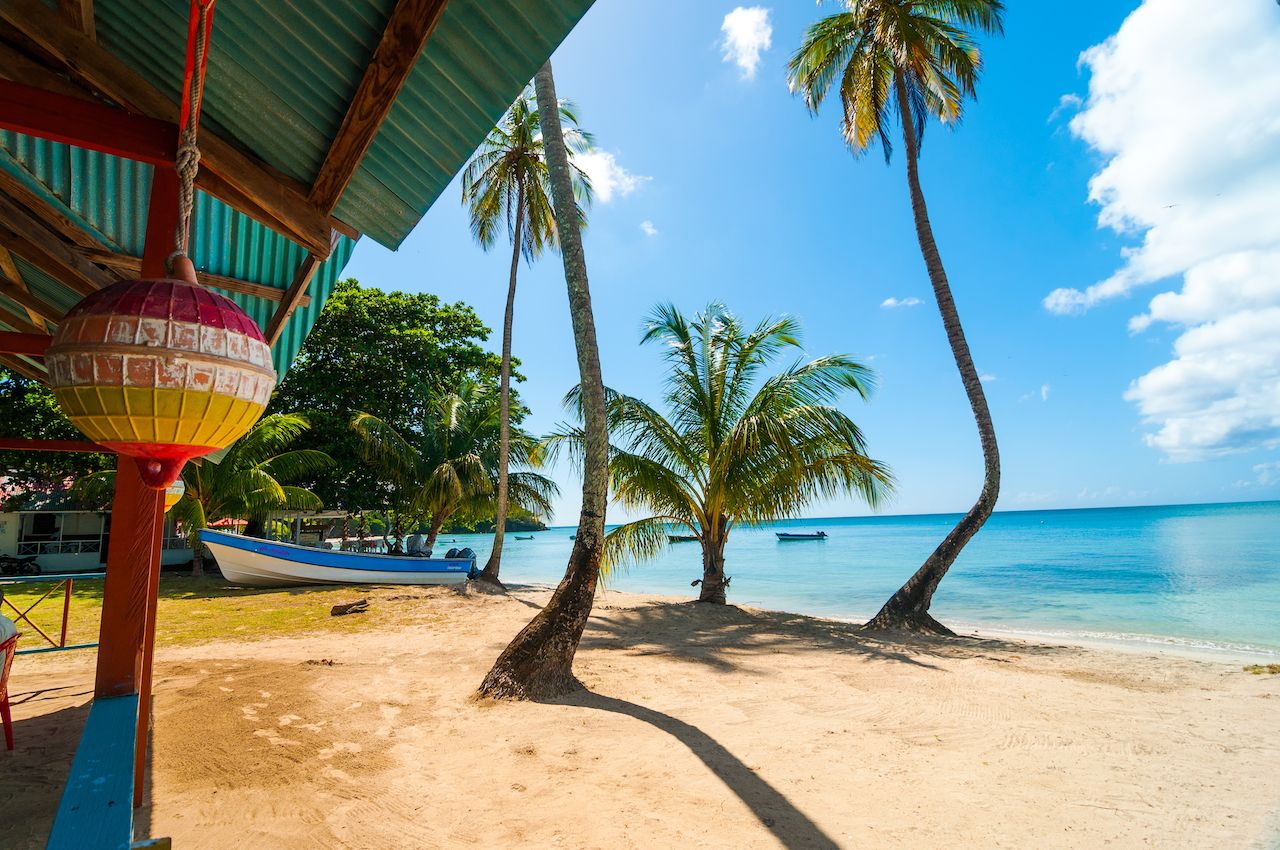 Beach, palm trees, and turquoise water in San Andres y Providencia, Colombia