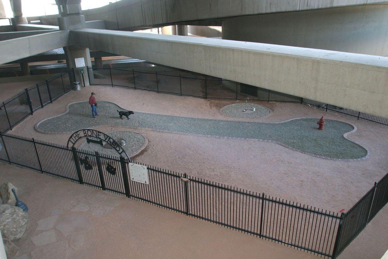 Bone Yard at Phoenix airport