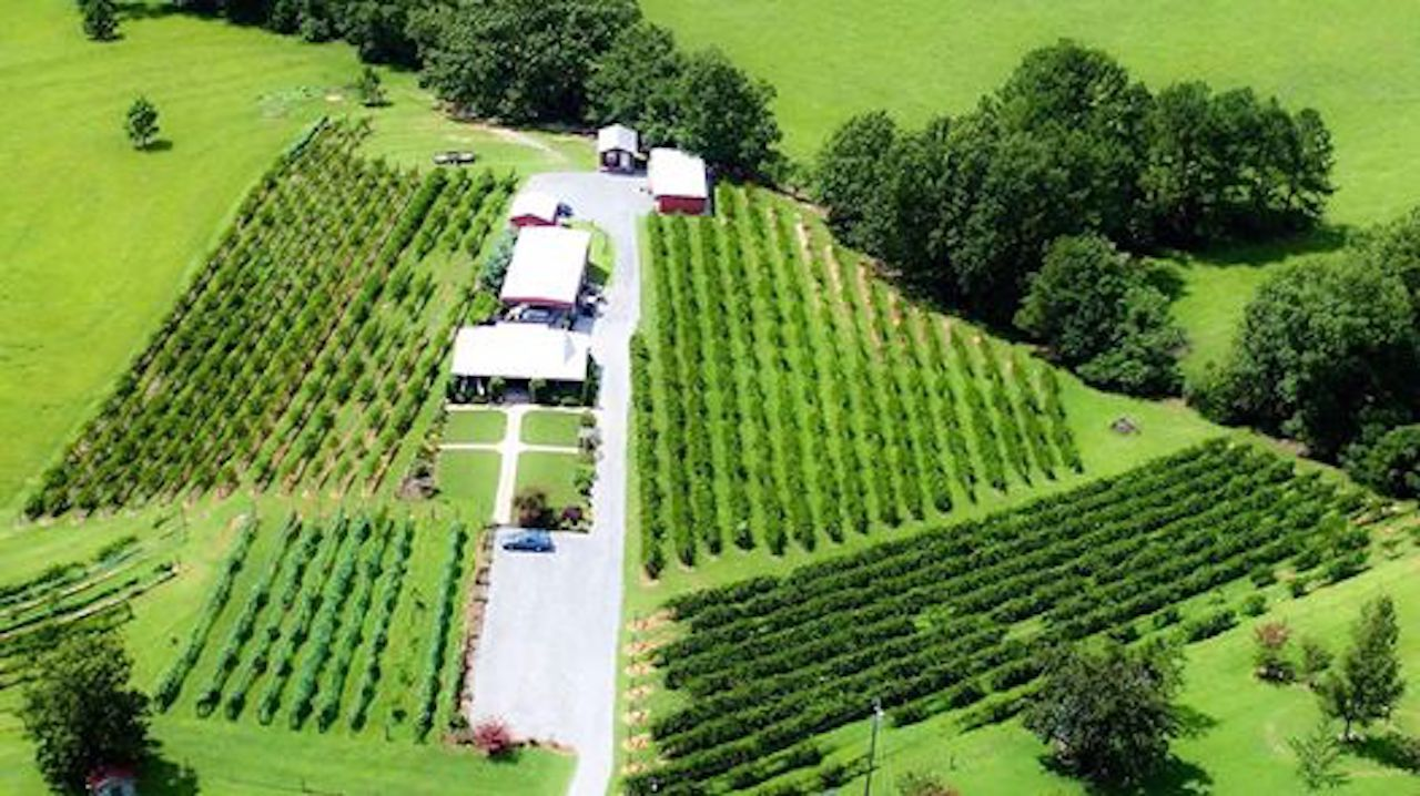 Hidden Meadow Vineyard and Winery in Alabama aerial view