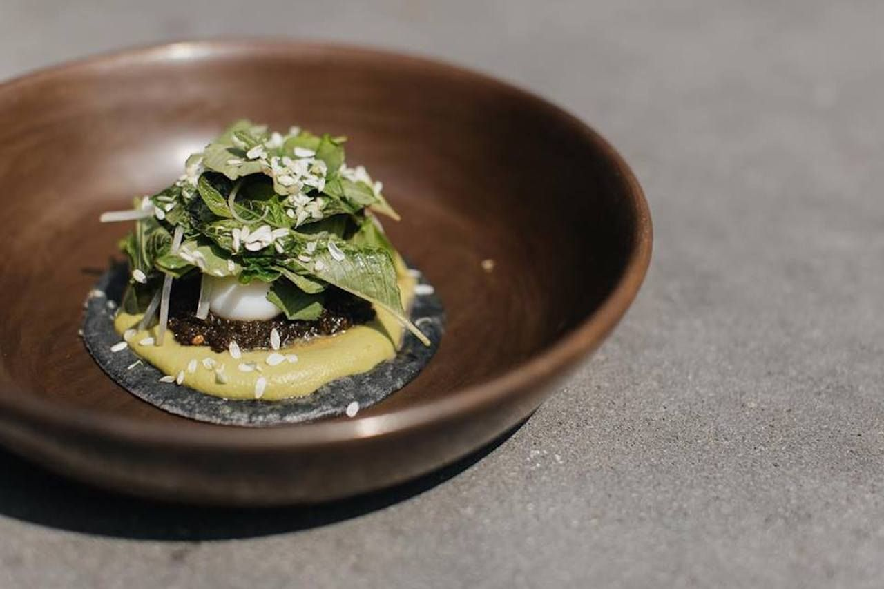 Beautifully plated Mexican food from an upscale restaurant in Mexico City