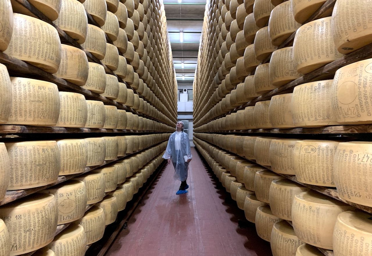 Parmesan cheese wheels in storage