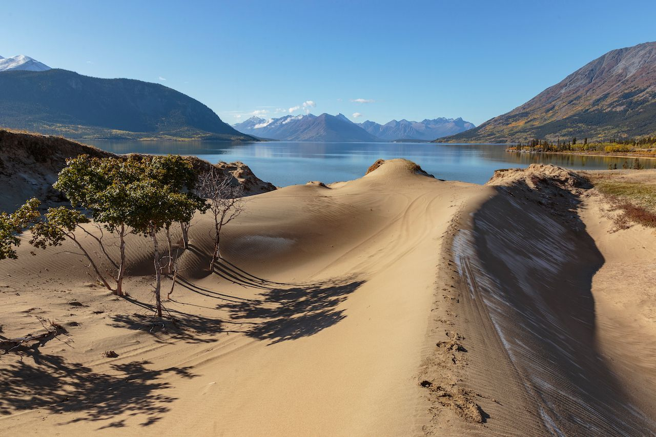 Sand dunes of Carcross desert in Canada