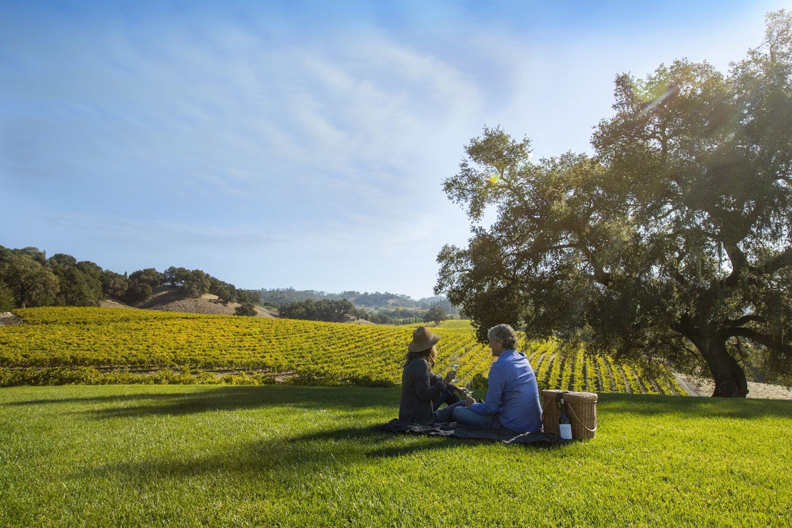 Sonoma County, CA: 3 itineraries