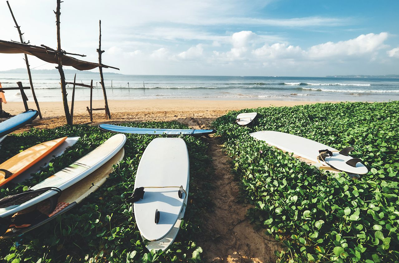 Surfboards are on the beach at Sri Lanka