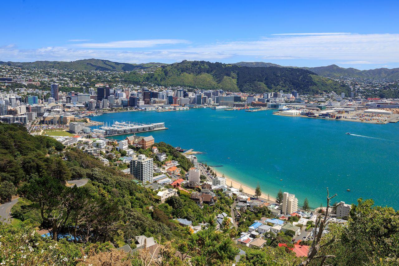 Why you should visit Wellington