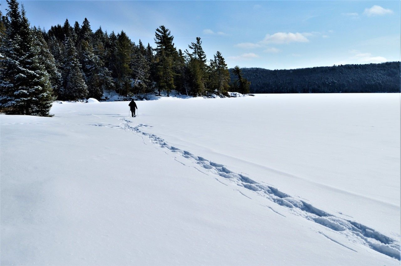 Winter Snowshoeing in Algonquin Provincial Park, Ontario, Canada