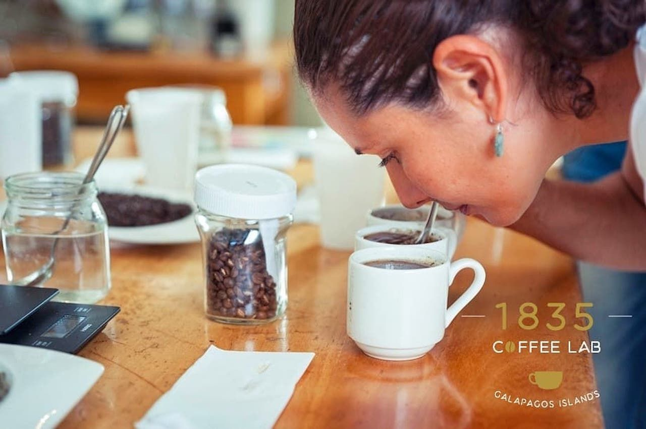 woman smelling cups of coffee with coffee beans on the table
