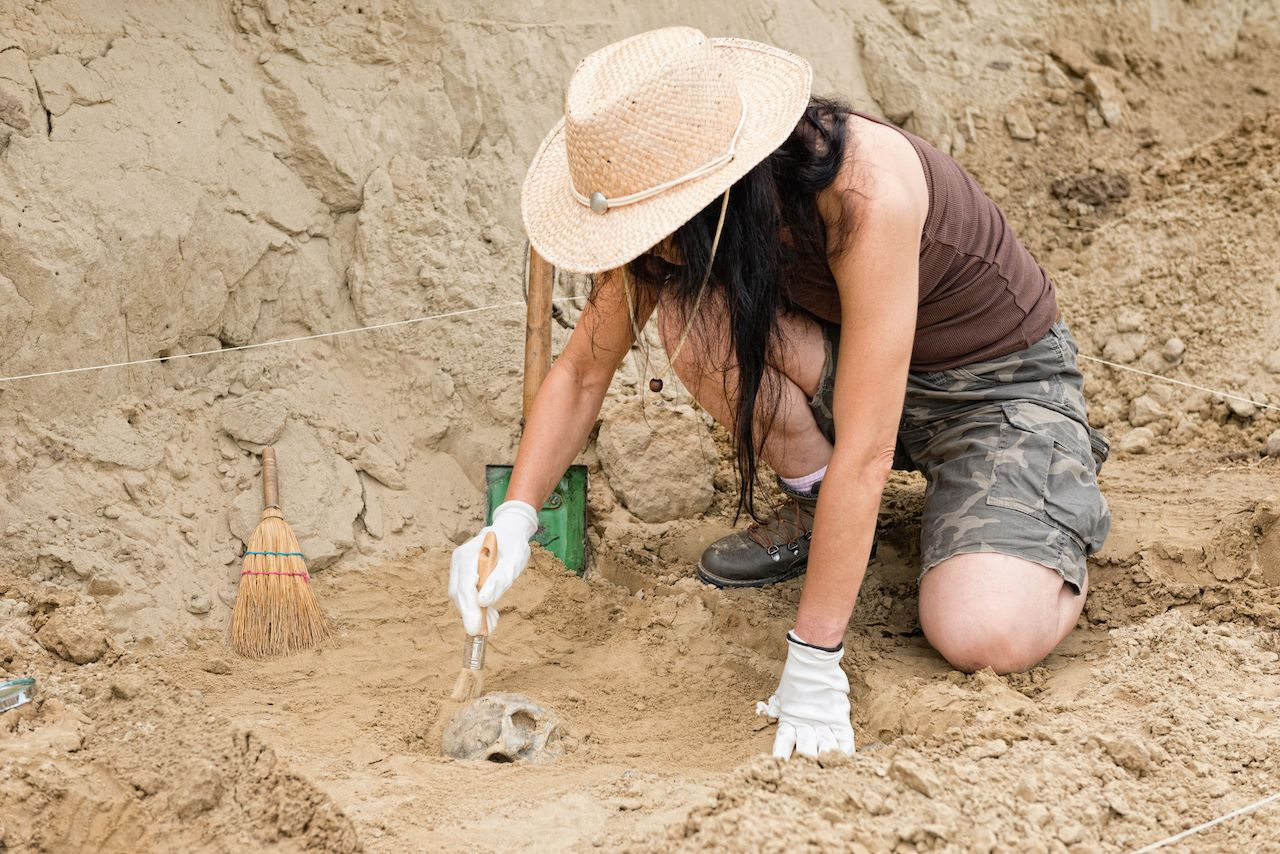 Where volunteer for archaeology digs