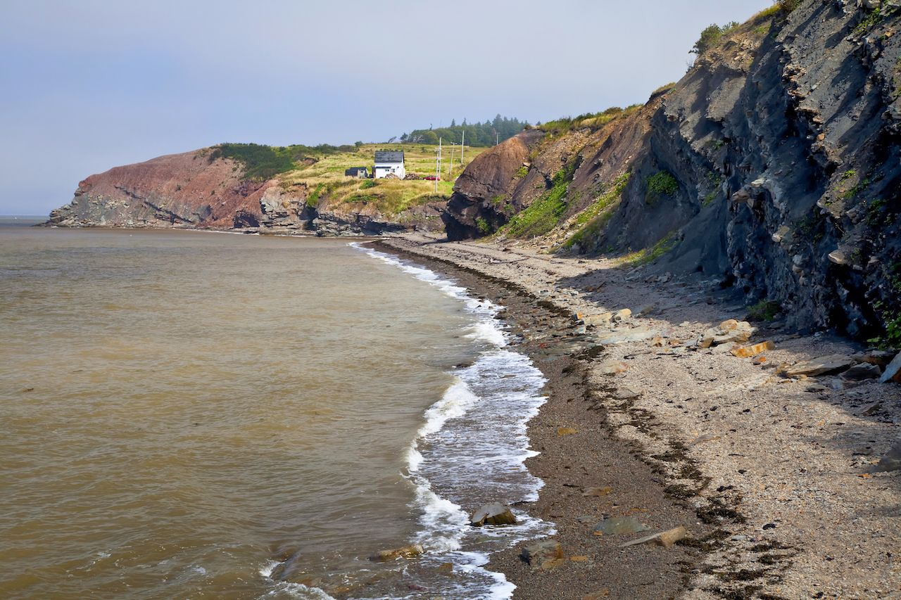 Bay of Fundy, at Joggins, Nova Scotia, Canada