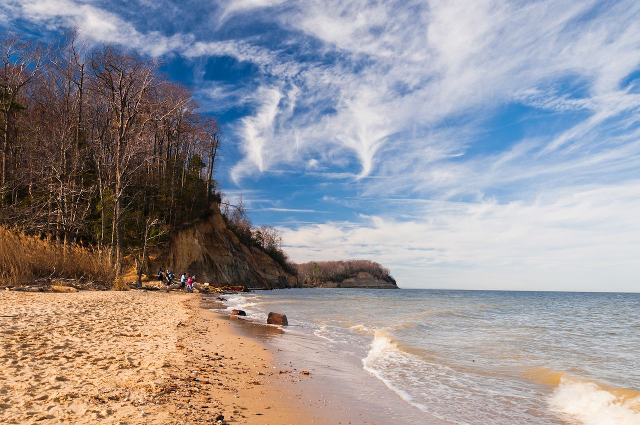 Beach and cliffs on the Chesapeake Bay at Calvert Cliffs State Park, Maryland