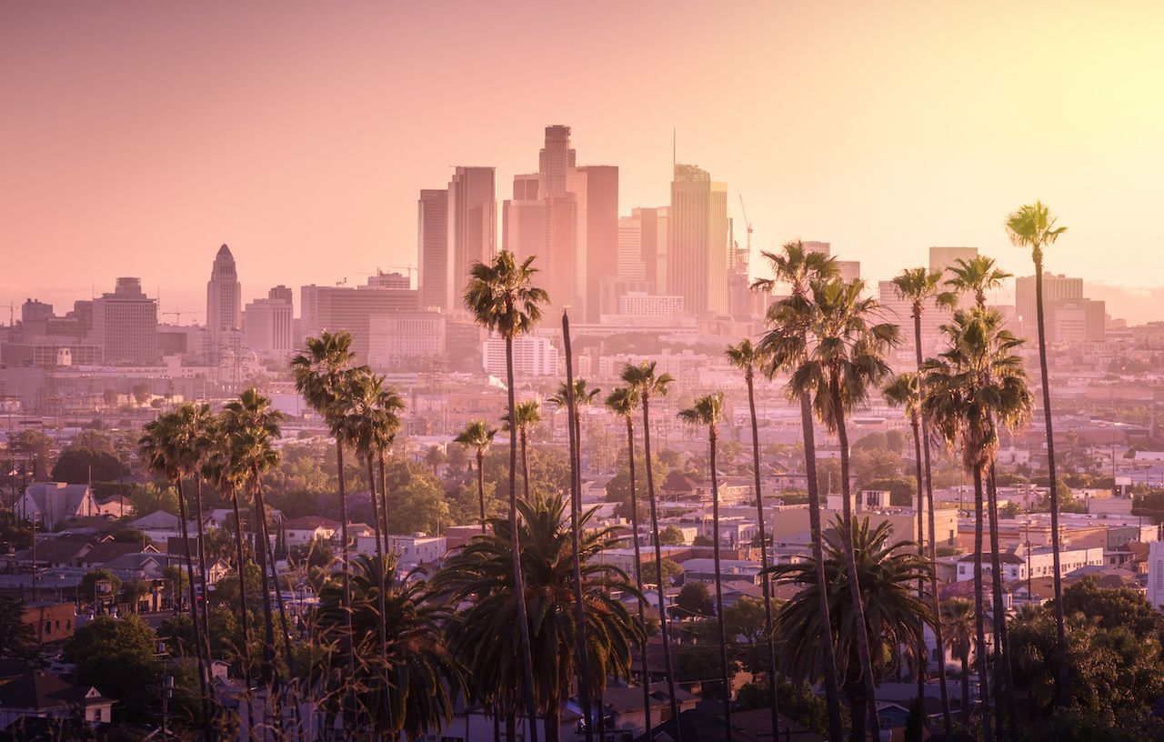 Beautiful Los Angeles sunset downtown skyline and palm trees in foreground