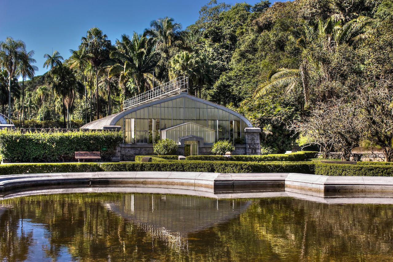 Botanic Garden in Sao Paulo, Brazil