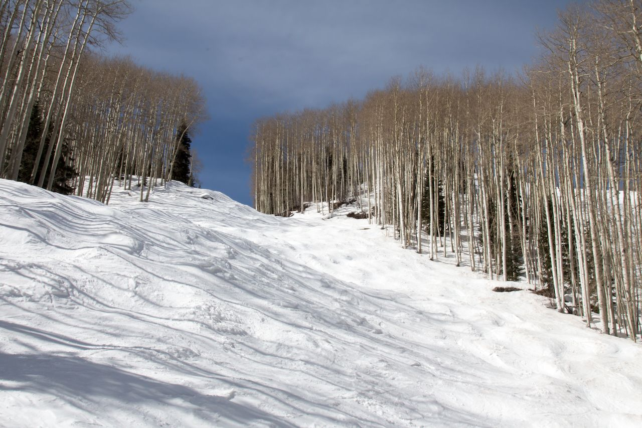 Bumpy ski run surrounded by bare aspen trees at Purgatory ski area in Durango, Colorado