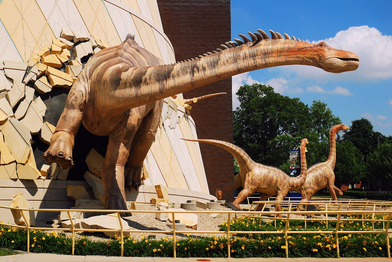 Dinosaur sculptures at the Indianapolis Children's Museum