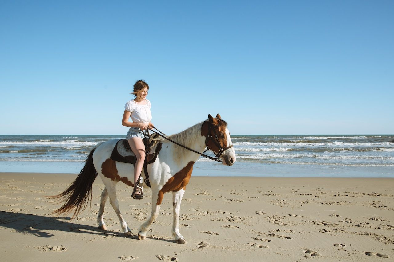 Horseback riding Outer Banks North Carolina