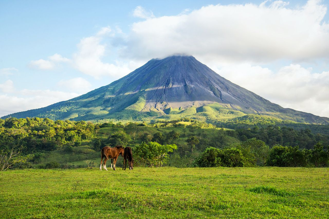 Carbon-neutral Costa Rica by 2021