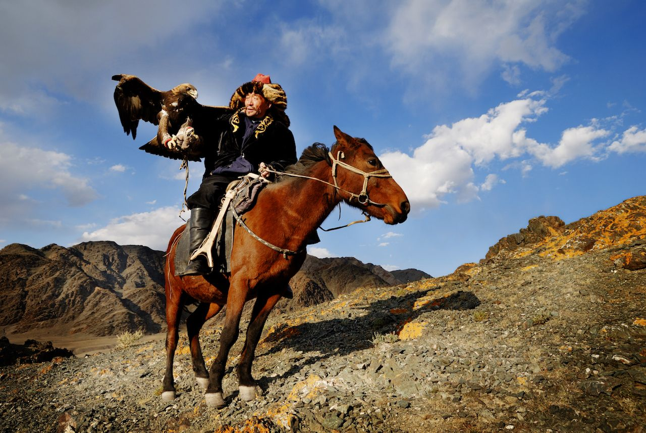 Kazakh men traditionally hunt foxes and wolves using trained golden eagles in Mongolia